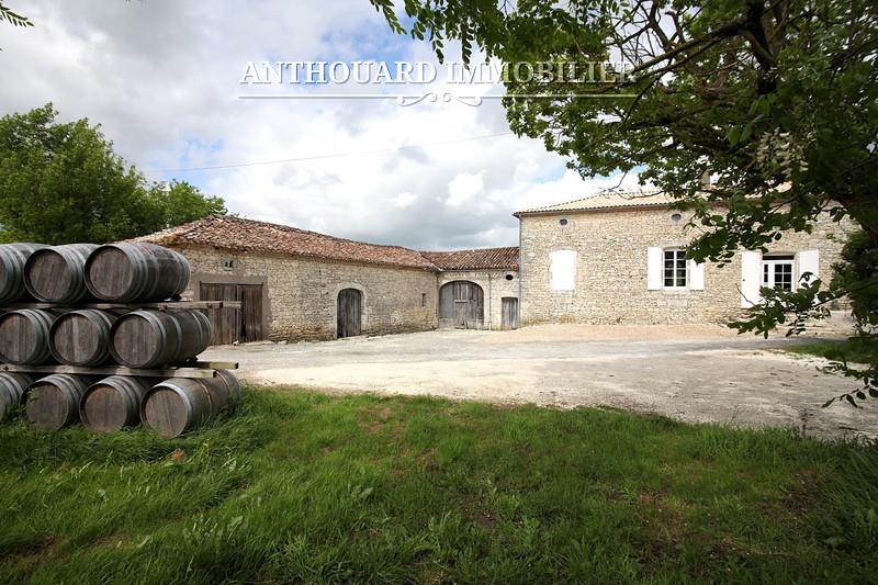 domaine viticole en aoc bergerac bio 24ha vignes et 30ha de c r ales vendre anthouard. Black Bedroom Furniture Sets. Home Design Ideas