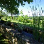 Vente propriété Dordogne grand parc