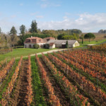Immobilier de prestige dordogne domaine viticole